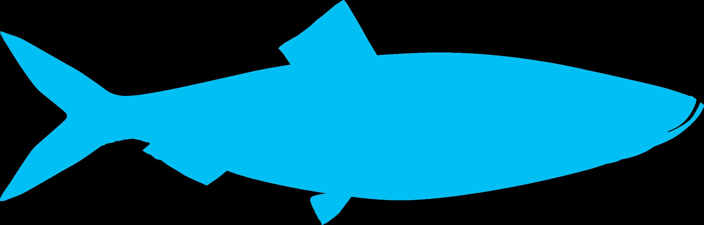 Image-Fish-herring-shape