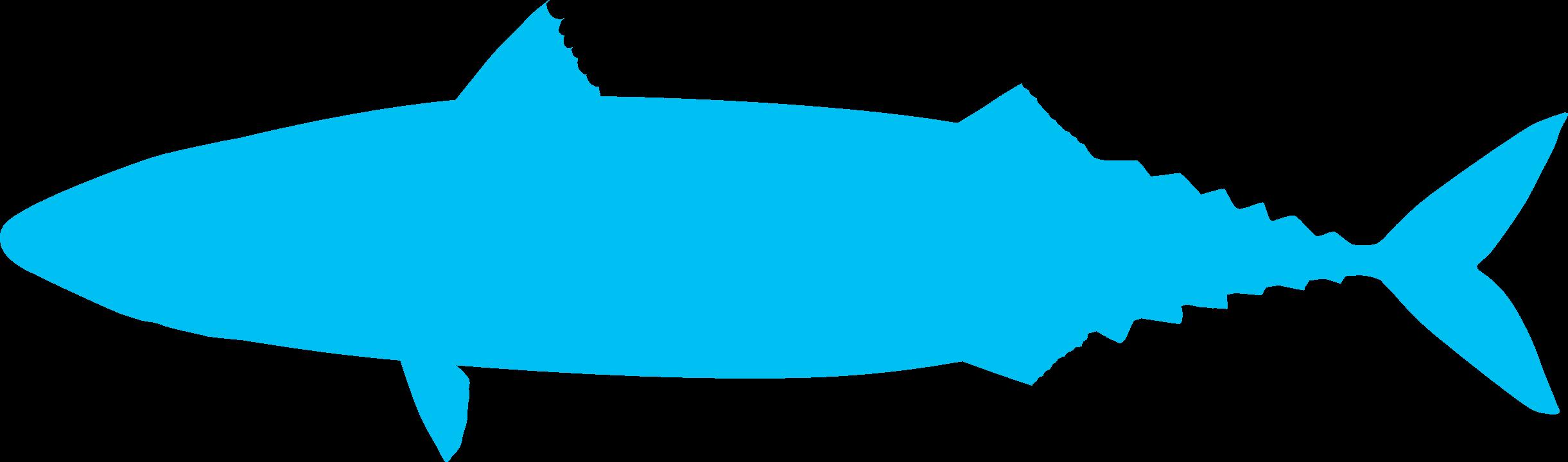 Image-Fish-mackerel-shape