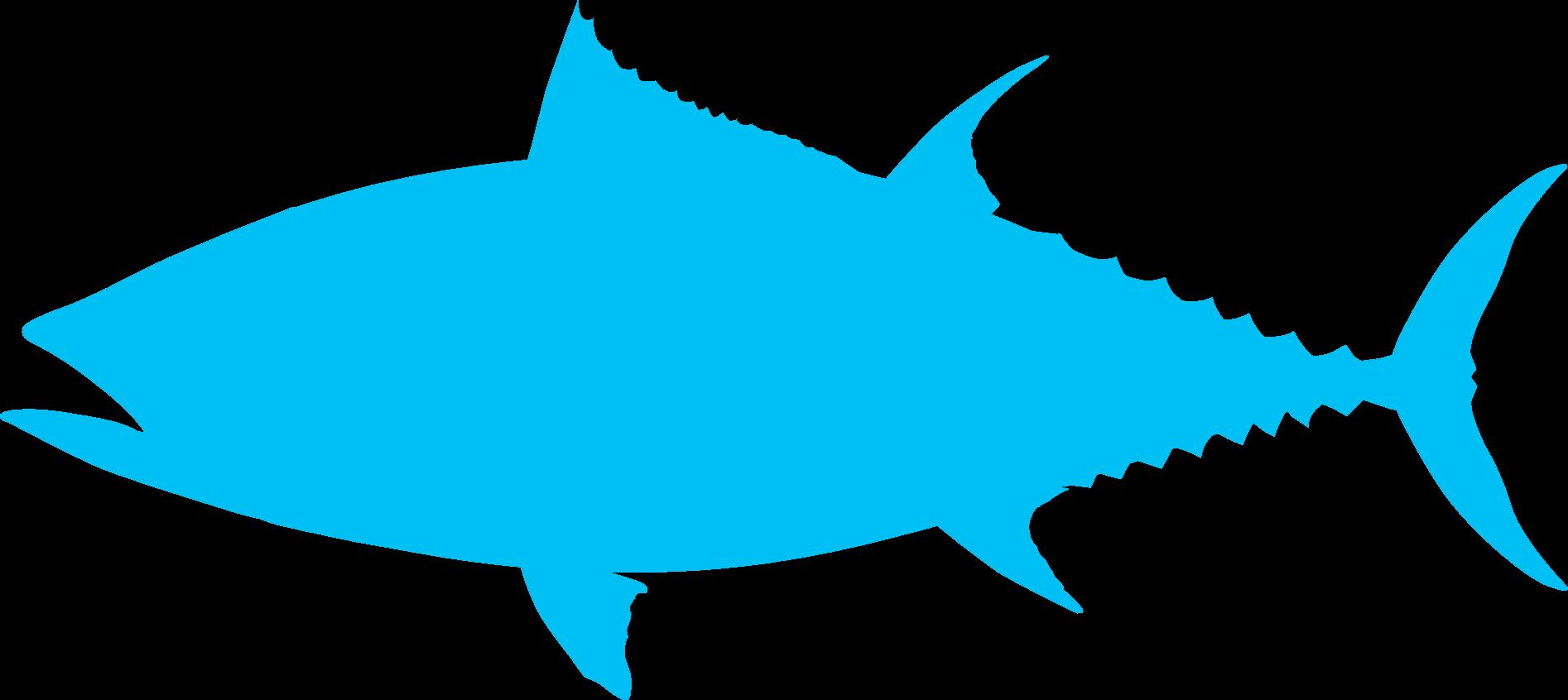 Image-Fish-tuna-shape
