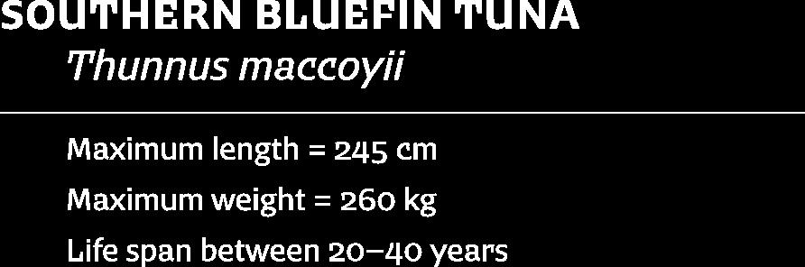 Image-Fish-tuna-text