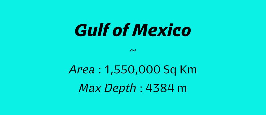 Image-Sea-Gulf