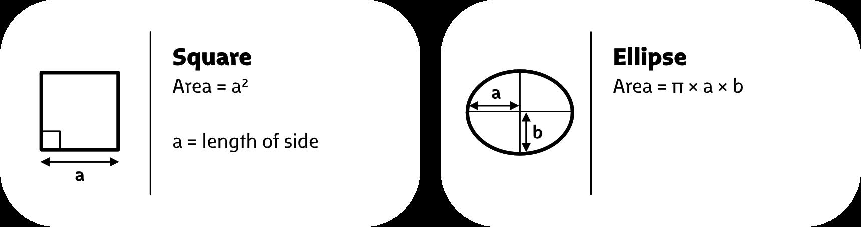 Image-Measure-4