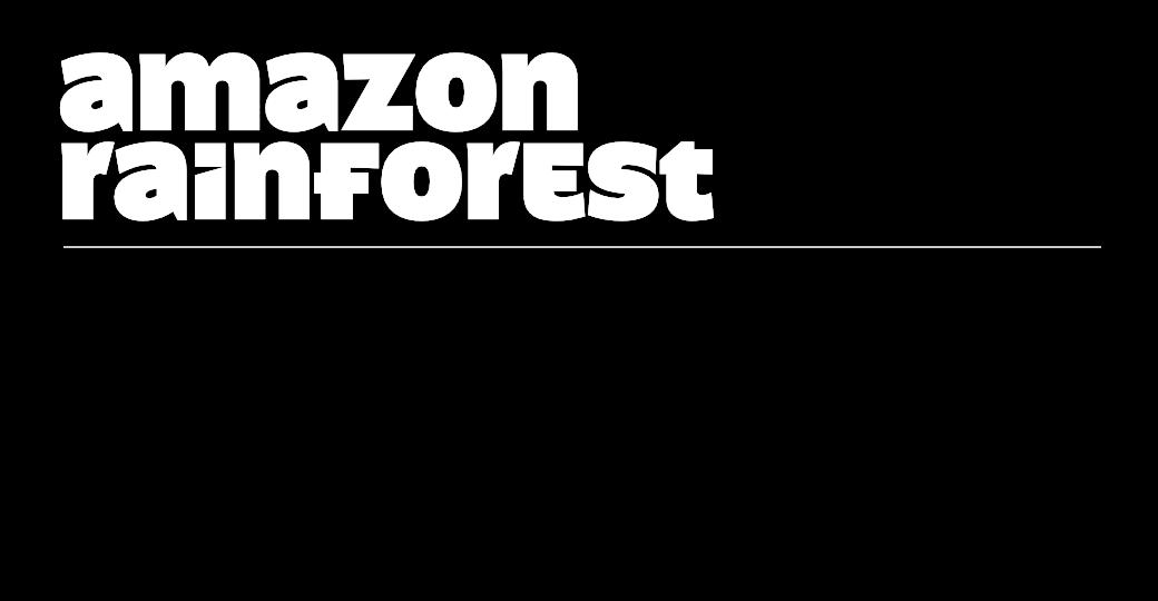 Image-Shr-forest-c2